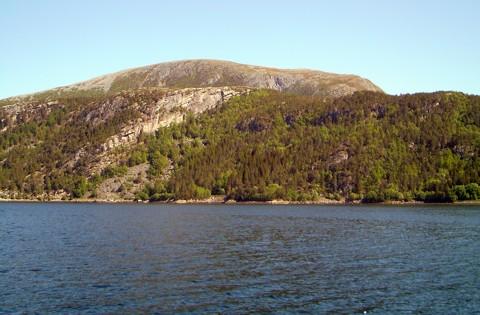 Trondheimsleia