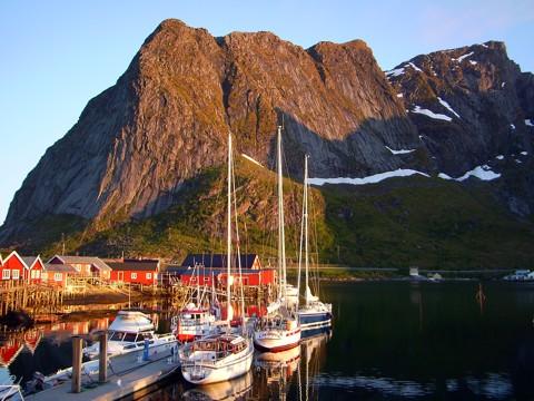 Hafen Reine - Lofoten