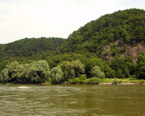 Felsen in der Donau