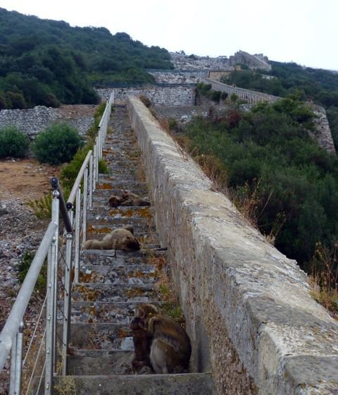 maurische Mauer Gibraltar