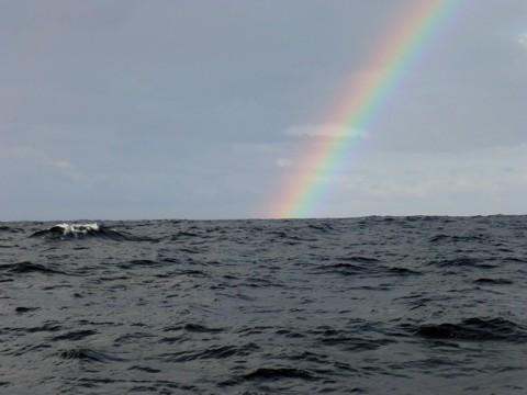 Nordatlantik Regenbogen