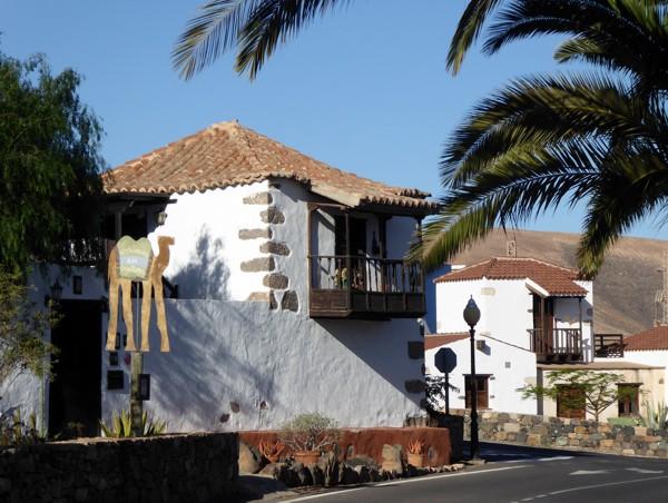 Pajara Fuerteventura