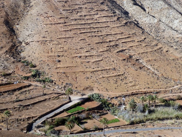 Terrassenfelder Fuerteventura