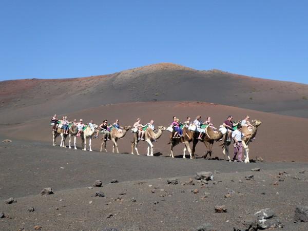 Kamelreiten Timanfaya