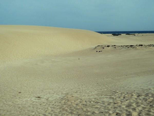 Dünen Corralejo