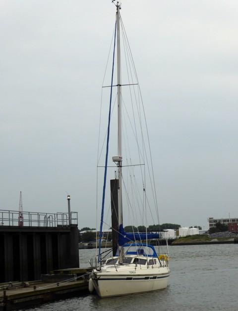 Tongji Cuxhaven