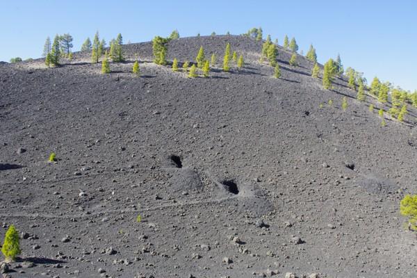 Vulkanaschefelder