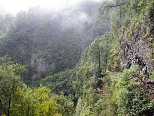 Wanderung - La Palma