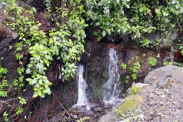gefiltertes Felswasser