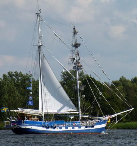 Baltic Beauty