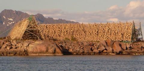 Trockenfisch Norwegen